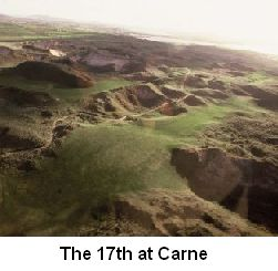 picture of irish golf course